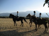 Passeggiate a cavallo con lo sfondo Moncayo