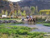 Equitazione lungo le strade della Navarra