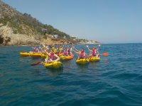 Group of various kayak