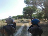 Under the pines on horseback