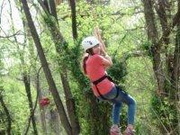 Bajando sobre los arboles