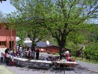 Talleres campamentos