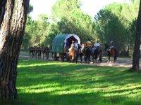 Percorsi Rocieras con vagone