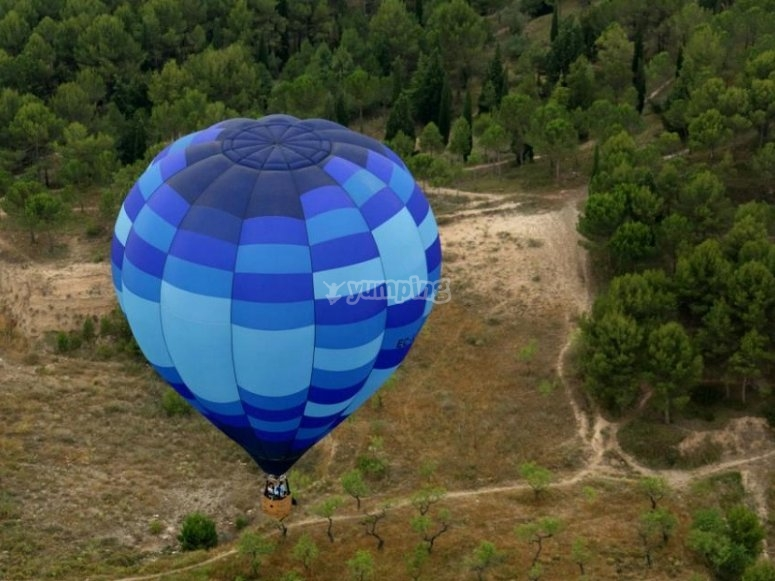 Palloncino nelle foreste di Ibizan
