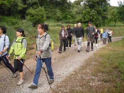 Nordic Walking perfeccionamiento El Berguedá 3h