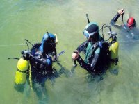 Diving courses