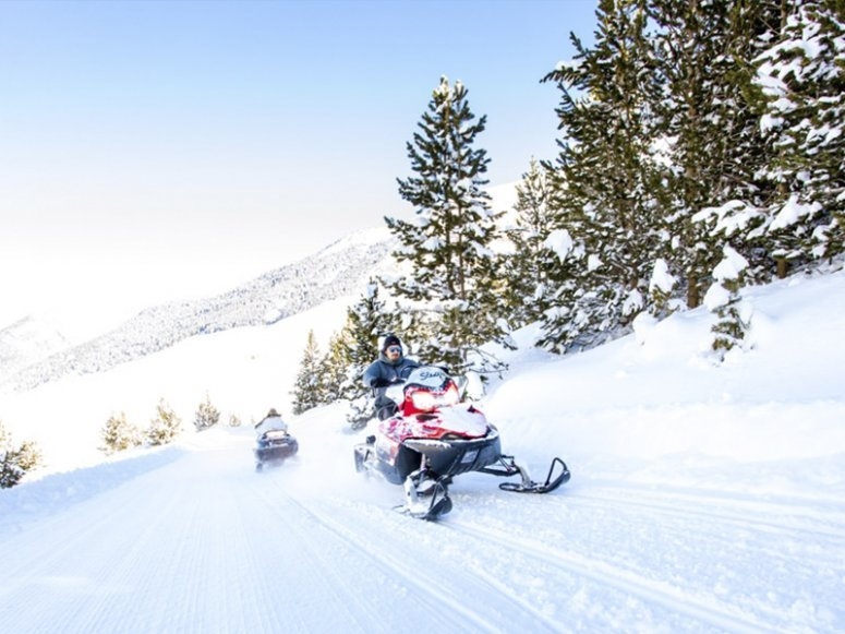 Snowmobile group