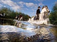 在托爾梅斯河骑90分钟马