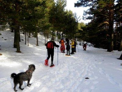 Ruta con raquetas de nieve Navacerrada 1/2 jornada