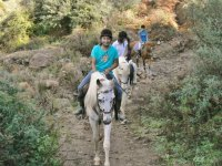 Horse riding in Málaga