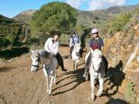 Horse riding for groups in Málaga
