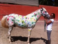 Horse painted by the kids