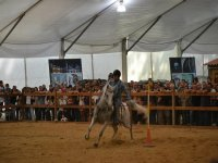 Equitacion de exhibicion