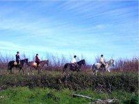 Rutas por Girona a caballo