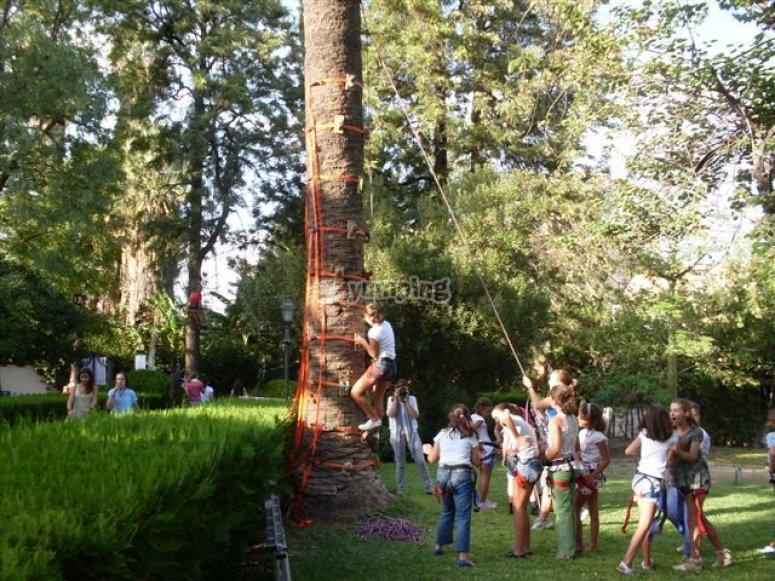 爬树--999-高空滑索