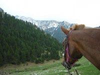 en nuestro caballo