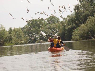 Kayak del Ter