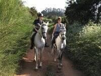 Equestrian route in Tenerife