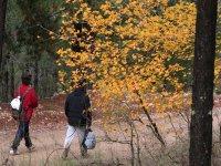 令人难以置信的美景秋季登山的景观排