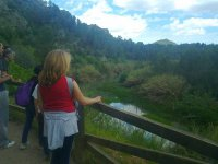 contemplando el paisaje