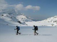 战车上越野滑雪