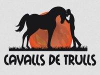 Cavalls de Trulls