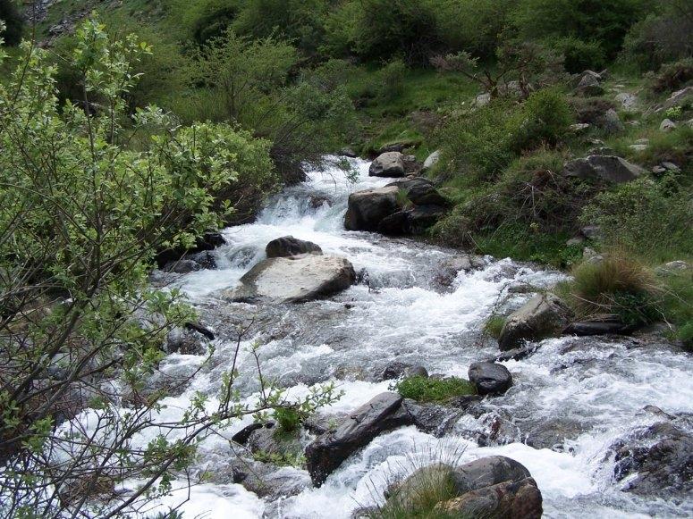 Entorno del Rio Genil