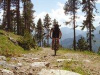 下坡骑自行车自行车路线