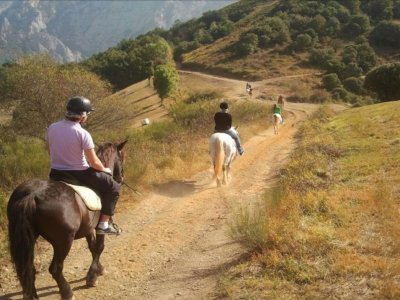 Horseback riding in Picos de Europa, 3 hours