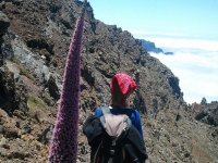 Senderismo por Tenerife