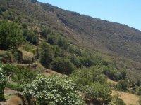 Sierra granadina