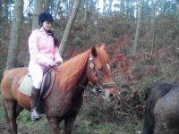 montando en el bosque