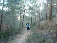Among Mediterranean forests in Polop
