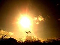 Orientate gracias al sol