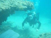 Deslizandonos entre formaciones submarinas