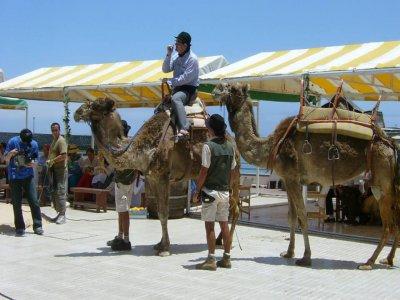 Paseo a camello en Uga durante 1 hora