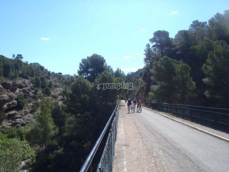在桥上骑自行车