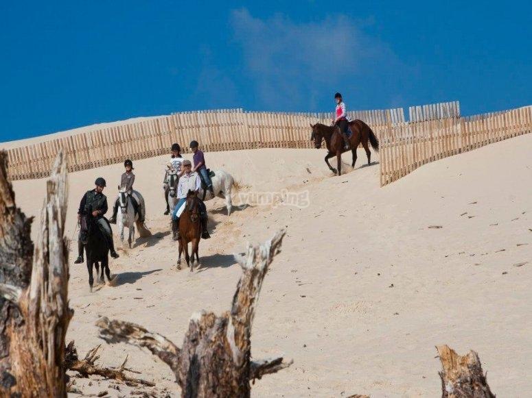 Horse riding through the beach