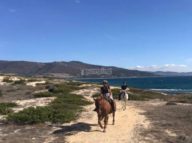 Next to the horses saddle