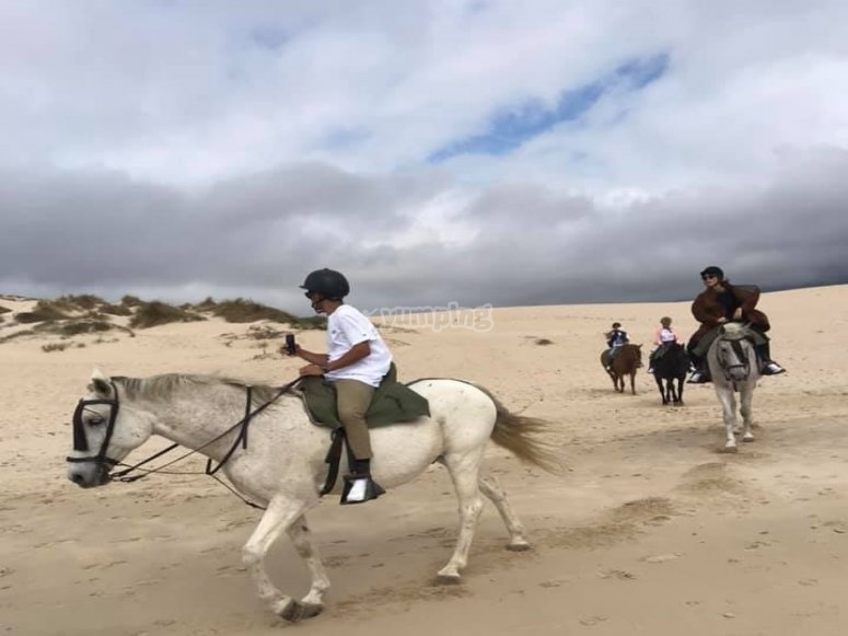 On the back of the horse