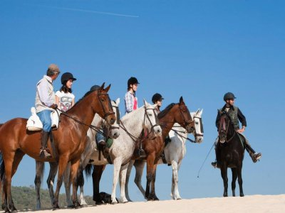 Horseback route in Estrecho Natural Park 1h