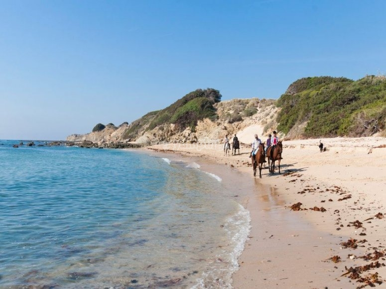 Horse riding in the beach