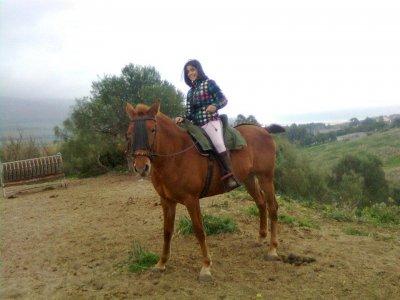 Equitazione nel parco naturale di Alcornocales 4h
