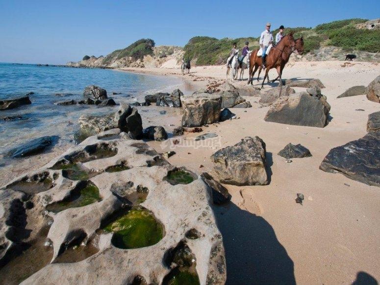 在海滩上骑马