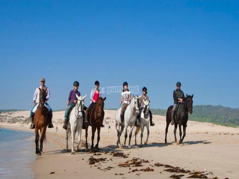 Paseo a caballo en grupo