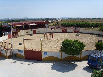 Paraje Los Palos
