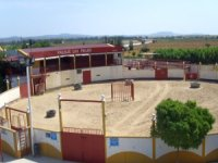 Plaza de capeas