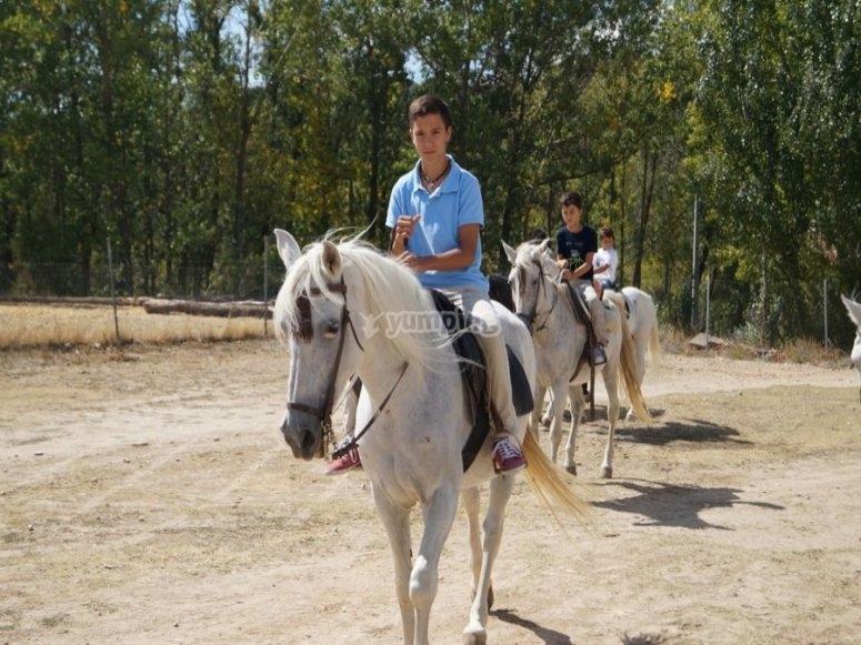 Horseback tour for all levels