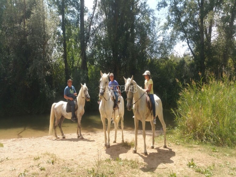 La caballos durante la ruta
