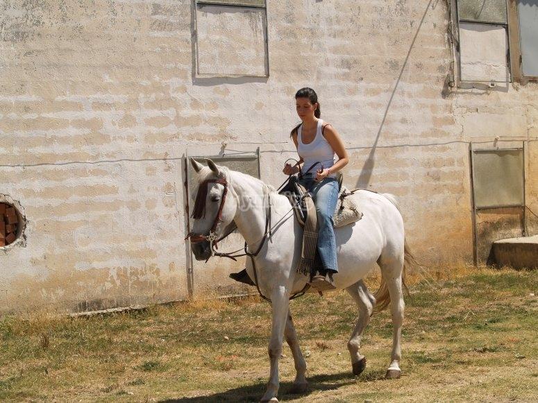 Lista para la ruta a caballo